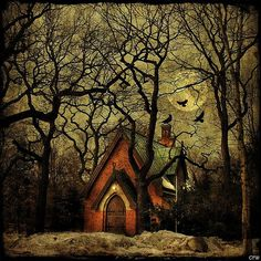raven cottage, Halloween, Witch, Goblin, Black Cat, Jack-O-Lantern, Bat, Skull, Ghost, Spooky, Full Moon, Pumpkin, Trick or Treat, Autumn, Fall, Haunted, Scarecrow, Magic Potion, Creepy, Spells, Ghouls
