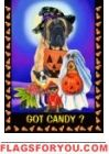 Got Candy? Garden Flags, Candy, Halloween, Dogs, Sweet, Toffee, Sweets, Doggies, Candy Bars