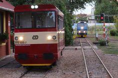 Železnice 600 – Elektrifikovaná úzkorozchodná zahradní železnice ve Vracově. Vehicles, Car, Vehicle, Tools
