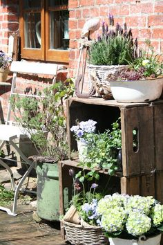 The kitchen terrace in spring look The wooden terrace in front of the kitchen window i . - The kitchen terrace in the spring look The wooden terrace in front of the kitchen window i … – - Garden Types, Diy Garden, Garden Cottage, Terrace Garden, Terrace Ideas, Garden Crafts, Patio Ideas, Wooden Terrace, Wooden Decks