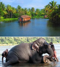 South India splendors Tour – South India Tours @ India Tourism Packages  http://toursfromdelhi.com/10-days-south-india-splendors-tour