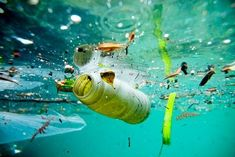 9 Different Types of Pollution and Their Causes and Effects | Styles At Life Ocean Pollution, Environmental Pollution, Plastic Pollution, Environmental Issues, Drones, Toulouse, National Geographic, Trash Art, Cause And Effect