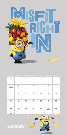 Despicable Me Minions Official 2017 Calendar - Square 305x305mm Wall Calendar 2017: Amazon.co.uk: Danilo: Books