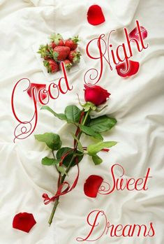 Good Night sister and all. Have a peaceful sleep. Good Night Lover, Good Night Qoutes, Good Night Thoughts, Good Night Sister, Romantic Good Night, Good Night Gif, Good Night Messages, Good Morning Inspirational Quotes, Good Night Sweet Dreams