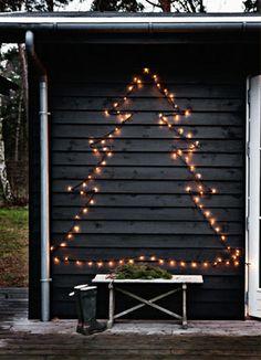 tree in lights