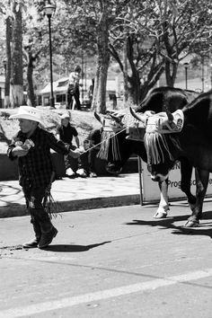 El día del Boyero- a b and w Photo Essay Photo Essay, The Visitors, Small Towns, Costa Rica, History, History Books, Historia