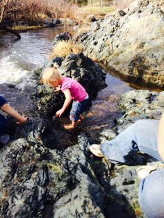 """A """"Fairy Good"""" Family Hike to Fairy Falls + First Aid sweepstakes #PuracynFirst #sponsored"""