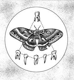 Carmelo Garraffo (aka Gozer Visions) #illustration #moth #drawing
