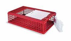 Přepravní box pro drůbež plastový - přepravka na živou drůbež má rozměry 950 x 565 x 270 mm, plastová přenoska na slepice má 2 dvířka, jedny nahoře a jedny zepředu. Přepravní klec na drůbež, koš k přepravě drůbeže. Poultry, Transportation, Decorative Boxes, Plastic, Crate, Chicken Eggs, Wood Shed, Birds, Different Types Of