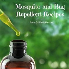 Best Essential Oil Mosquito