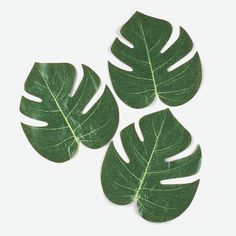 Tropical Leaves. Scatter these polyester leaves on beach party tables to create an authentic tropical island atmosphere! These green leaves will add a fresh natural look to your luau decorations! 8""