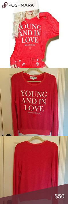 Wildfox Young & In Love Beach Jumper NWOT Super soft and cute!  I bought this new and just havent worn.  No flaws. Wildfox Tops Sweatshirts & Hoodies