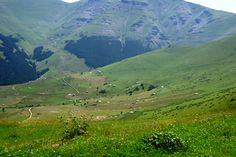 Trabzon/Maçka/Kiraz Yaylası-Plateau