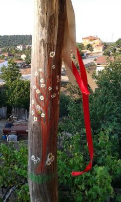 Ağaçlandırma ☆