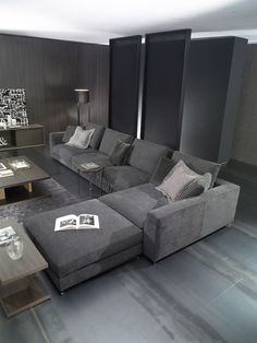 grey sofa ideas; grey living room designs; sofa color ideas.