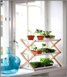 Plant Shelves For Window Sills
