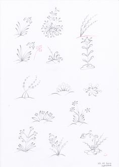 Plants and flowers 5
