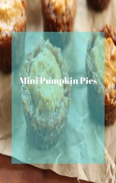 Pumpkin pie layered with a rich cream cheese filling and a smooth pumpkin cream cheese blend in a delicate crust.  #nobakepumpkinpie #nobakepumpkinpiecheesecake #nobakepumpkinpieoatmealcookies #nobakepumpkinpiebites #nobakepumpkinpieinabag #nobakepumpkinpieinajar Mini Pumpkin Pies, No Bake Pumpkin Pie, Baked Pumpkin, Pumpkin Cream Cheeses, Cream Cheese Filling, Oatmeal Cookies, Cheesecake, Delicate, Smooth