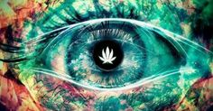 Like if your a fan of Pictures For The Everyday Stoners