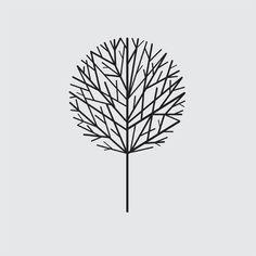 James Provenza graphic design