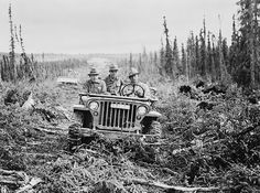 A Jeep driving along the cleared roadbed for the ALCAN highway. The ALCAN was built over the course of seven months as a rough pioneer road and supply route. Old Jeep, Jeep Cj, Jeep Truck, Chevy Trucks, Military Jeep, Military Vehicles, Alcan Highway, Alaska Highway, Willys Mb