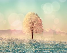 Fine Art Print, Dreamy Tree, Digitally altered photograph, vintage look, dreamy turquoise,, peach, wall art, home decor, giclee, landscape