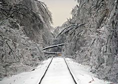 Staying Safe and Warm: How to Prepare for an Ice Storm -Posted on December 29, 2013