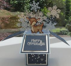 IMG 7835 f improf 600x559 Dasher the Deer in a Pop up Box