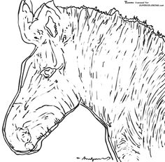 zebra by andy warhol coloring page
