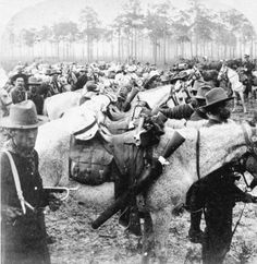 Lesson 12 Captain Curry of the Rough Riders: Tampa, Florida Vintage Florida, Old Florida, Tampa Florida, Florida Travel, Tampa Bay, The Spanish American War, American History, Manatee County Florida, Rough Riders