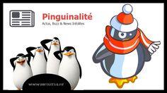 Le site Officiel de la Pinguinalité Insolite