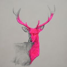 """Wild Thing"" by Louise McNaught"