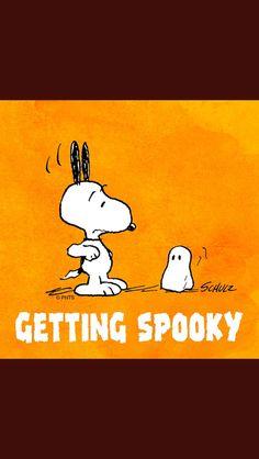 Snoopy and Woodstock Charlie Brown Halloween, Great Pumpkin Charlie Brown, Peanuts Halloween, Charlie Brown And Snoopy, Fall Halloween, Happy Halloween, Halloween Crafts, Snoopy Love, Snoopy And Woodstock