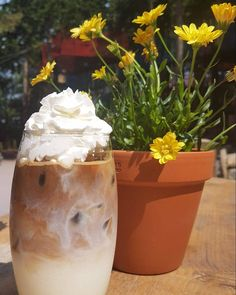 Wow it's HOT HOT HOT! Can we tempt you with an Iced Latte con panna at Zip World Fforest Caffi?! #DrinkAdventure #ExperienceAdventure