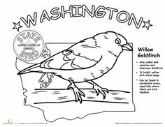Printables Child Support Worksheet Washington washington worksheets and fun on pinterest state bird