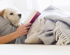 Hygge is all about feeling cosy and what could be cosier than a warm, fuzzy blanket? (Dog optional, but preferable.) MORE: 11 ways to make your life more hygge Vida Animal, Mundo Animal, I Love Dogs, Puppy Love, Mans Best Friend, Best Friends, Loyal Friends, Relax, Reading In Bed