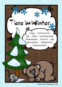 Tiere im Winter: Leseheft für die Kleinen / auch in Silbenschrift