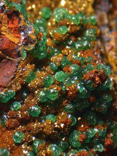 Cuprian Adamite (zinc/arsenic) on jarosite (iron/ sulfur/ potassium) partly replaced by goethite