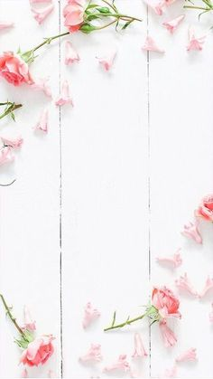 Trendy ideas for flowers wallpaper backgrounds iphone Frühling Wallpaper, Beste Iphone Wallpaper, Flower Iphone Wallpaper, Spring Wallpaper, Wallpaper Gallery, Trendy Wallpaper, Tumblr Wallpaper, Flower Backgrounds, Wallpaper Backgrounds