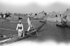 Marshes,1950,south of iraq