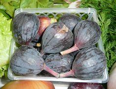 Fresh Fig Nutrition -- Fig Salad --  Fig  Recipes at http://figrecipes.healthandfitnessjournals.com