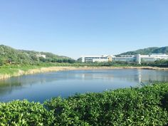 #campus #lake #university