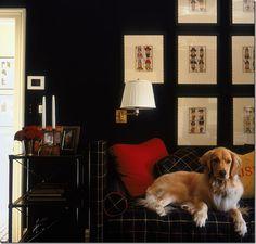 tartan.  dogs.  fabulousness.