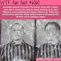 This man drove out of Auschwitz - WTF fun facts