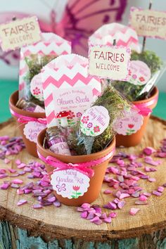 DIY: Fairy Garden Kit #craft #favor #gift