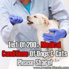 List Of 200+ Medical Conditions Of Dogs And Cats   ►►	http://lovable-dogs.com/list-of-200-medical-conditions-of-dogs-and-cats/?i=p