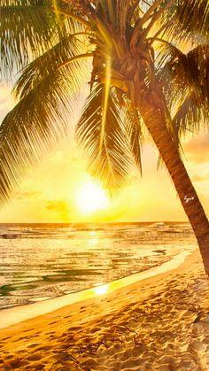 ***GIF***Sunshine reflection