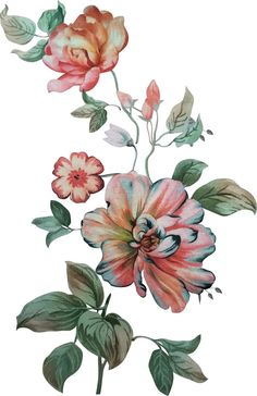 Flower Art Images, Garden Windows, Bunch Of Flowers, Flowers Nature, Rooster, Watercolor, Animals, Painting, Digital