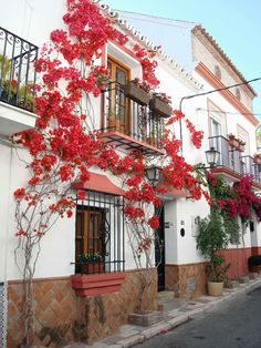 Malaga Spain- Costa del Sol My first visit to Europe visiting my friends was here.