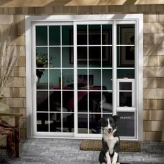 Wood Windows White Trim Shaw Laminate Floor In